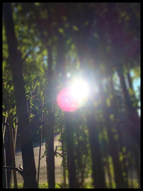 photo-sep-10-8-19-33-am
