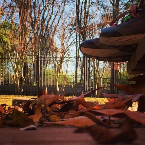 Photo Dec 09, 3 11 02 PM