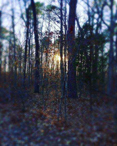 Photo Dec 09, 4 03 16 PM (1)